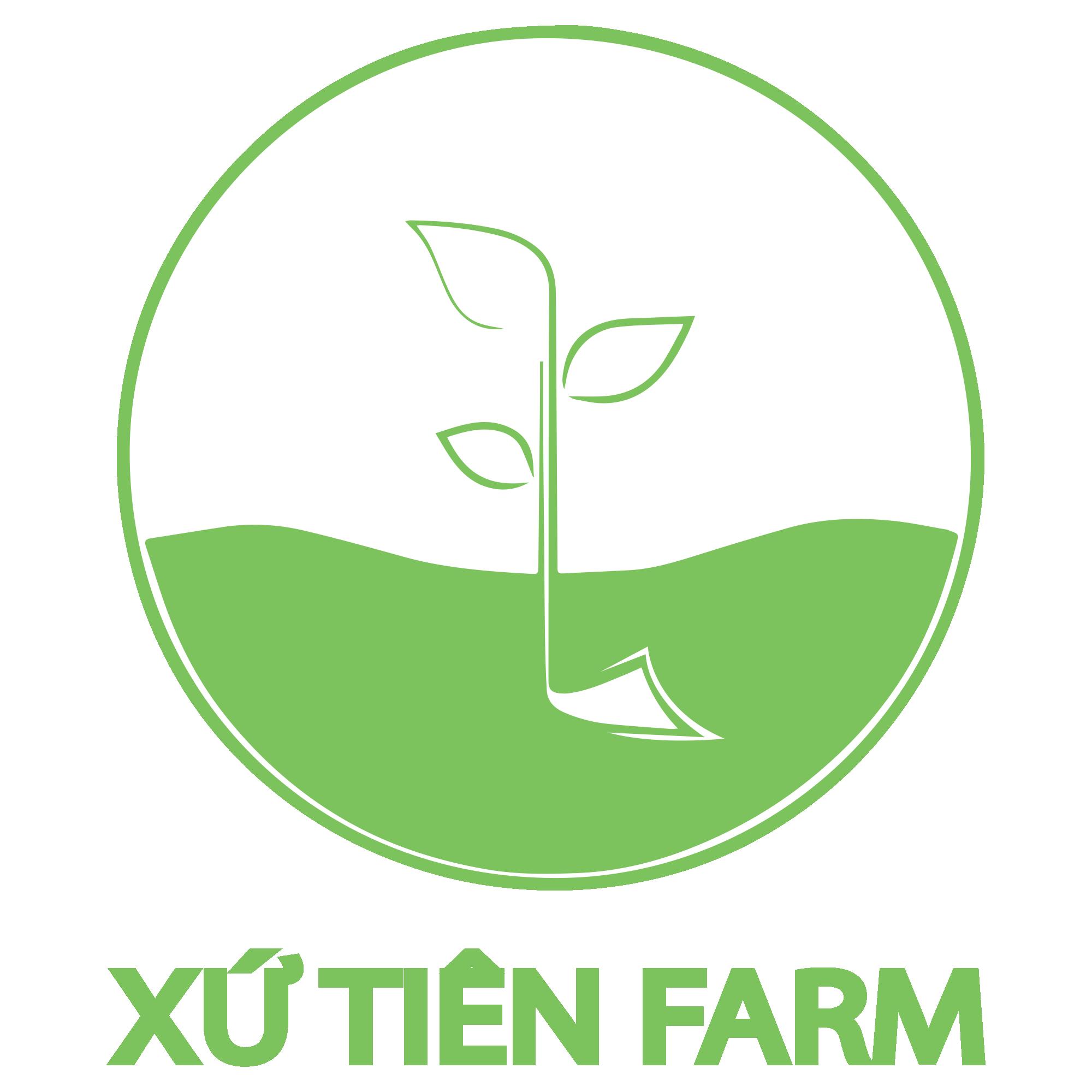 Nông nghiệp hữu cơ Tiên Phước