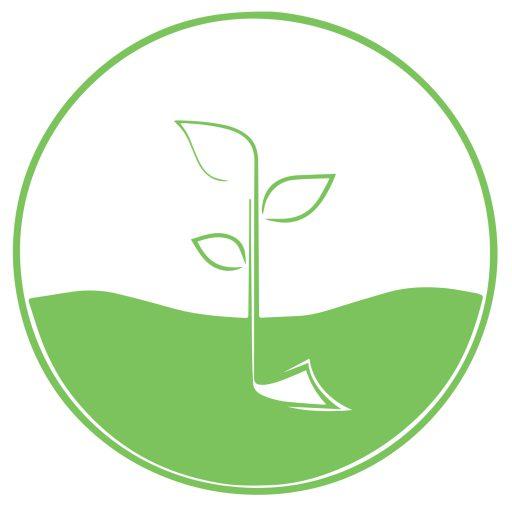 Nông nghiệp hữu cơ Xứ Tiên Farm